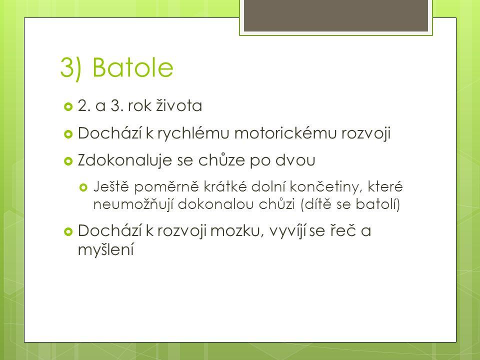 3) Batole 2. a 3. rok života Dochází k rychlému motorickému rozvoji