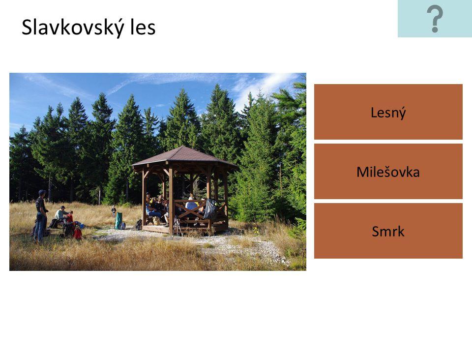 Slavkovský les Lesný Milešovka Smrk