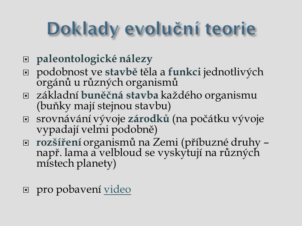 Doklady evoluční teorie