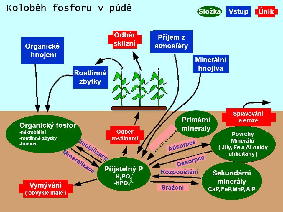 Koloběh fosforu v půdě Složka Vstup Únik Odběr sklizní Příjem z