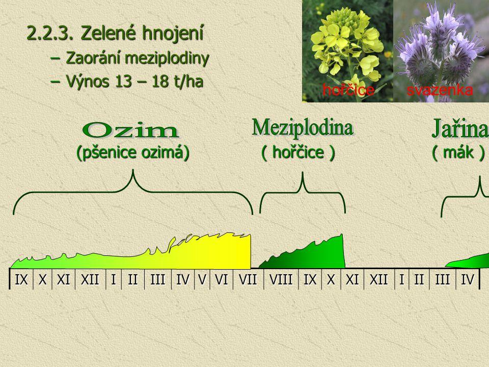 Meziplodina Jařina Ozim 2.2.3. Zelené hnojení Zaorání meziplodiny