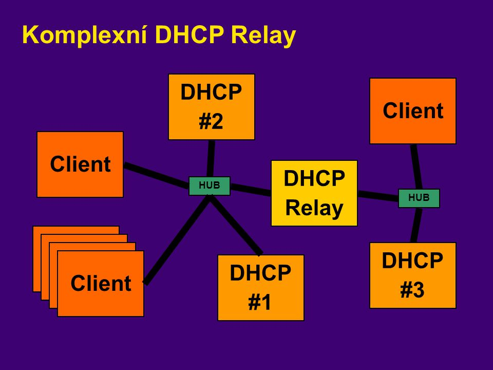 Komplexní DHCP Relay DHCP #2 Client Client DHCP Relay Client Client