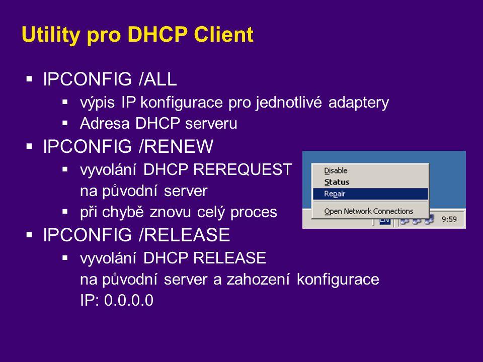 Utility pro DHCP Client