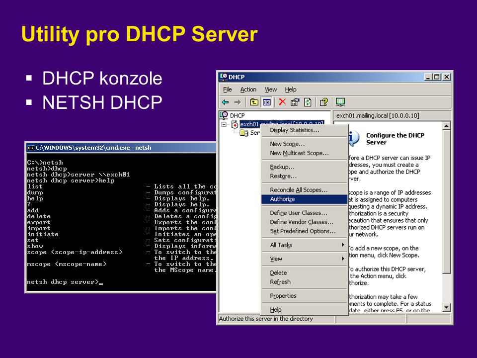 Utility pro DHCP Server