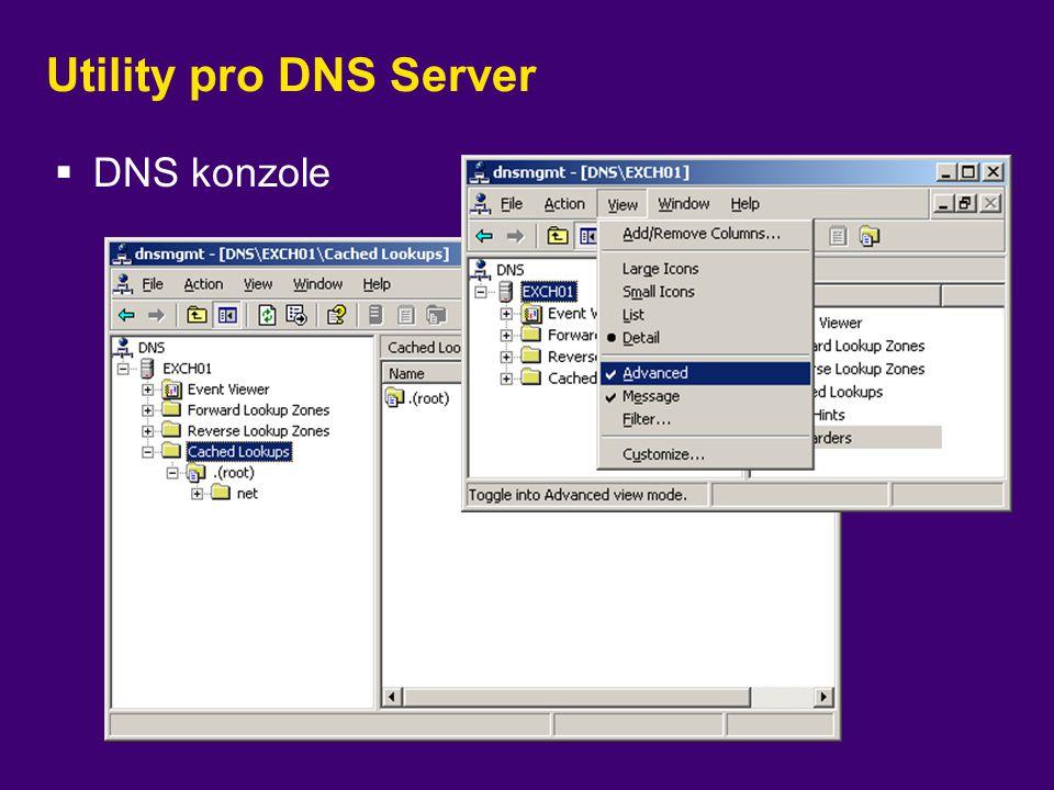 Utility pro DNS Server DNS konzole