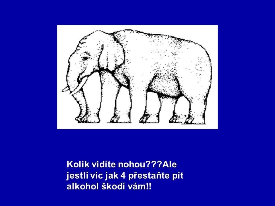 Kolik vidíte nohou Ale jestli víc jak 4 přestaňte pít alkohol škodí vám!!