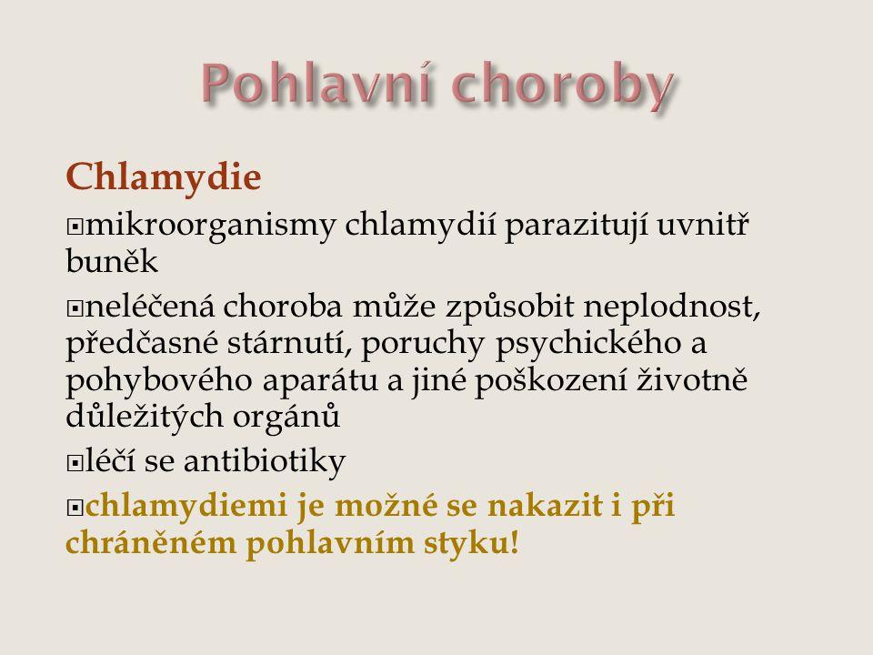 Pohlavní choroby Chlamydie