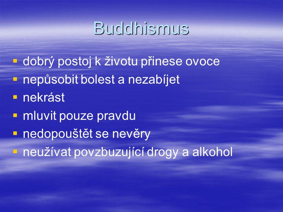 Buddhismus dobrý postoj k životu přinese ovoce