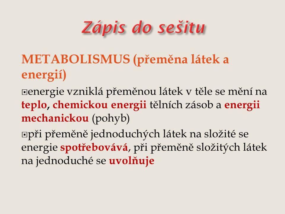 Zápis do sešitu METABOLISMUS (přeměna látek a energií)