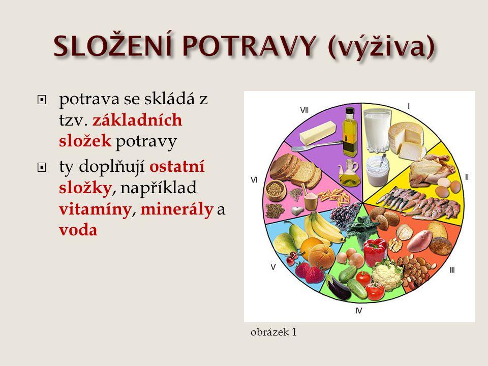 SLOŽENÍ POTRAVY (výživa)