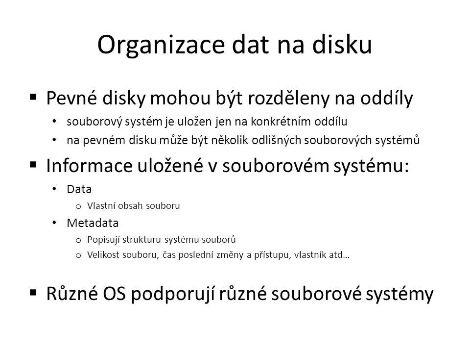 Organizace dat na disku