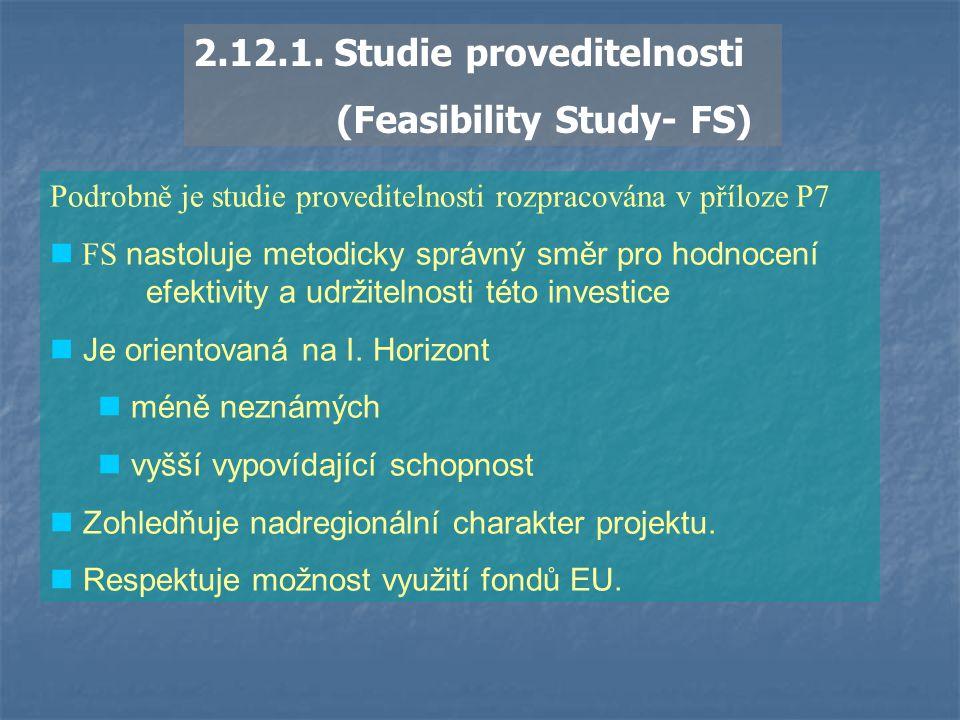 2.12.1. Studie proveditelnosti (Feasibility Study- FS)