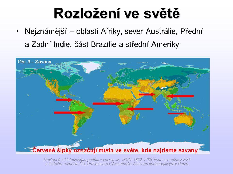 Rozložení ve světě Nejznámější – oblasti Afriky, sever Austrálie, Přední a Zadní Indie, část Brazílie a střední Ameriky.