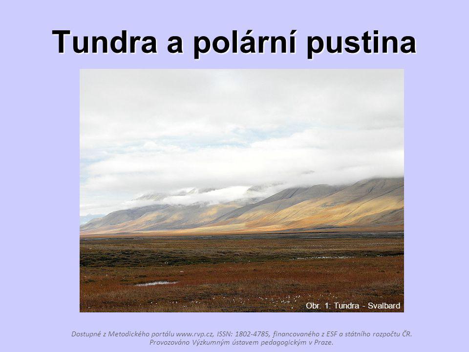 Tundra a polární pustina