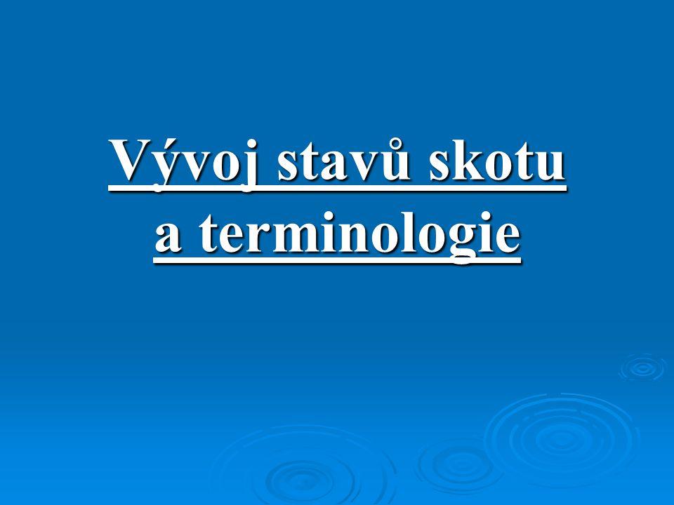 Vývoj stavů skotu a terminologie