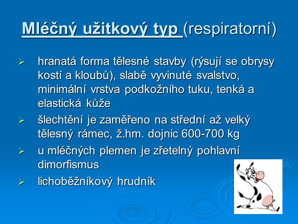 Mléčný užitkový typ (respiratorní)