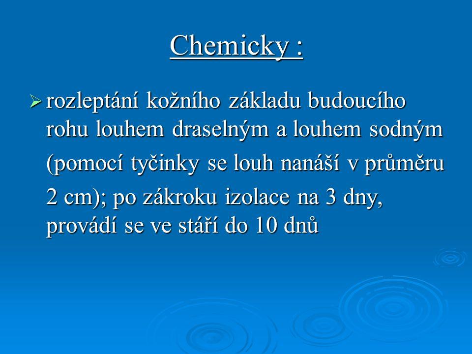 Chemicky : rozleptání kožního základu budoucího rohu louhem draselným a louhem sodným. (pomocí tyčinky se louh nanáší v průměru.
