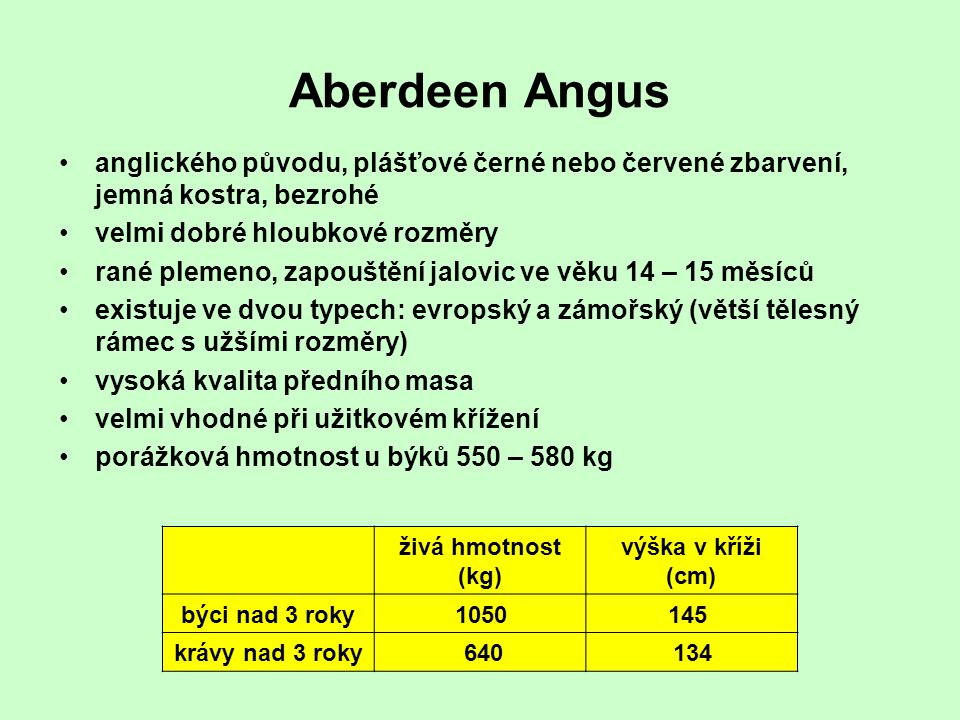 Aberdeen Angus anglického původu, plášťové černé nebo červené zbarvení, jemná kostra, bezrohé. velmi dobré hloubkové rozměry.