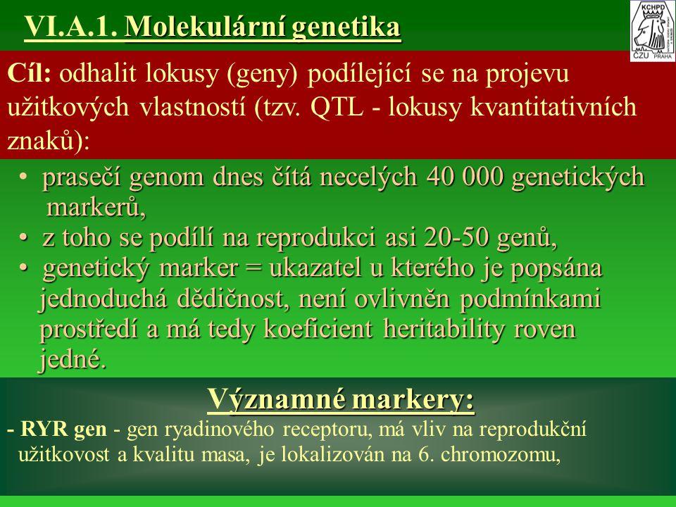 VI.A.1. Molekulární genetika