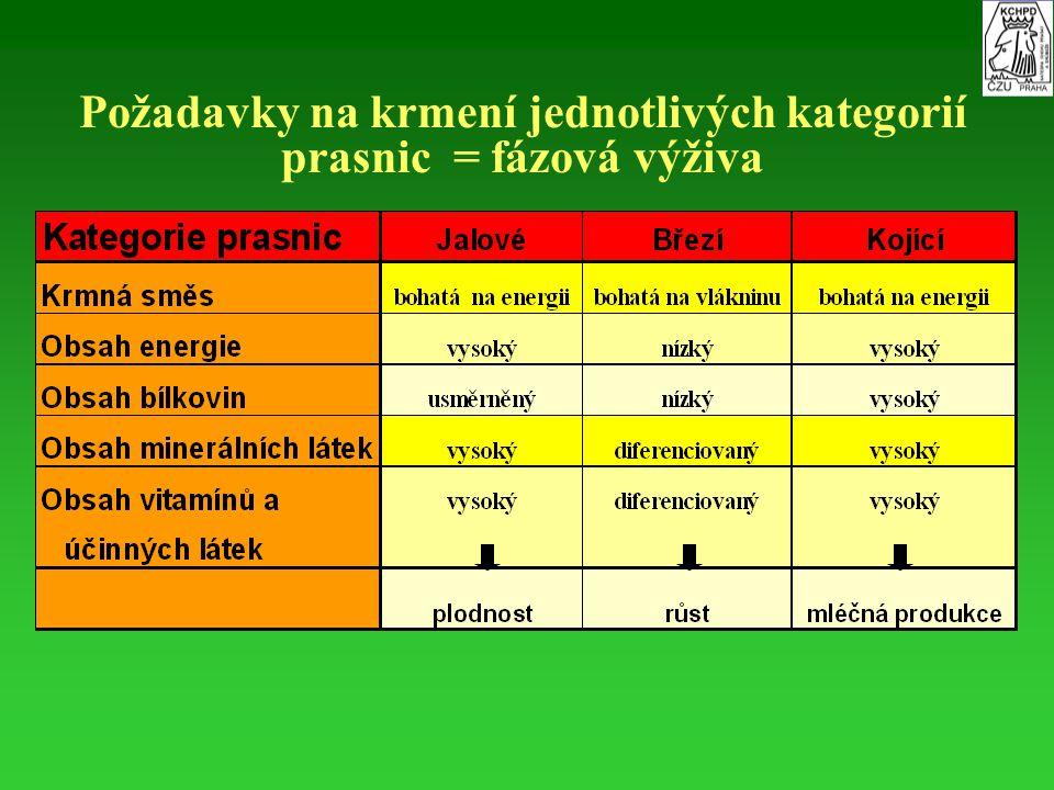Požadavky na krmení jednotlivých kategorií prasnic = fázová výživa