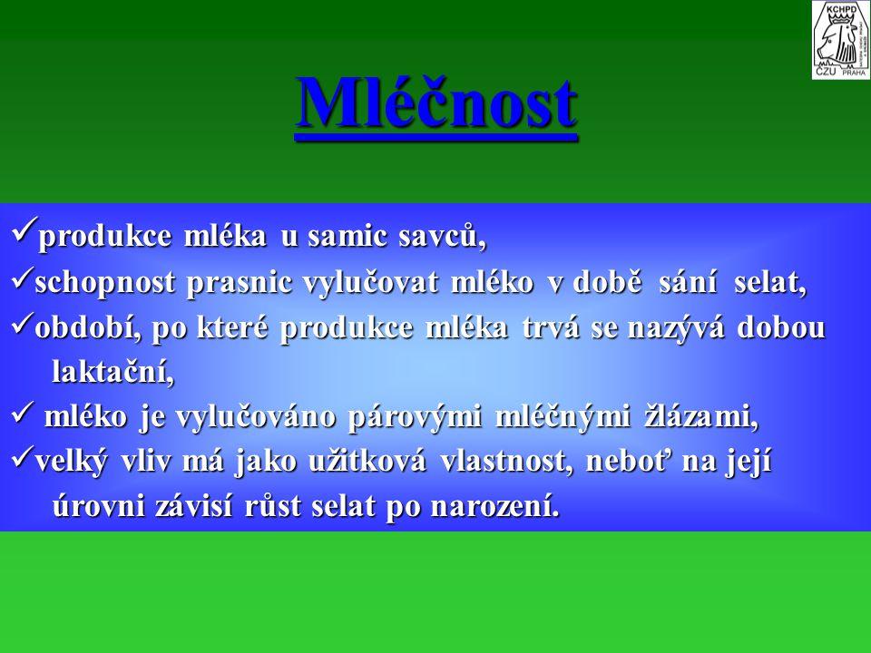 Mléčnost produkce mléka u samic savců,