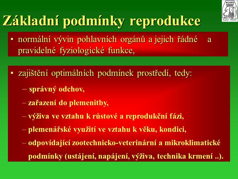 Základní podmínky reprodukce