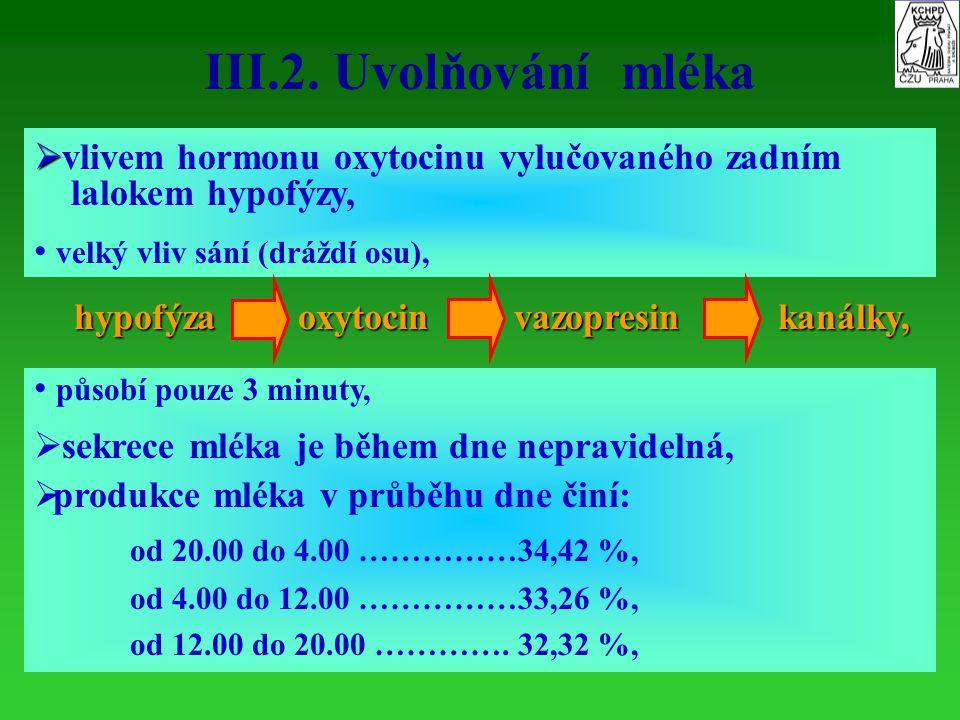 III.2. Uvolňování mléka vlivem hormonu oxytocinu vylučovaného zadním