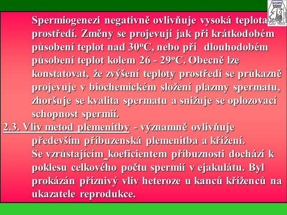 Spermiogenezi negativně ovlivňuje vysoká teplota. prostředí
