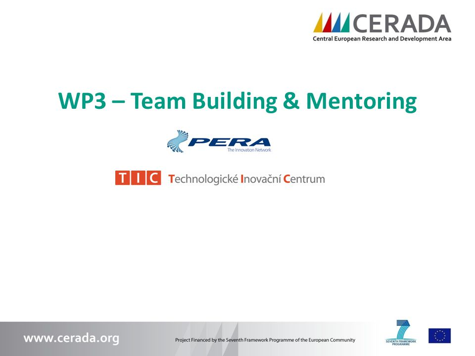 WP3 – Team Building & Mentoring