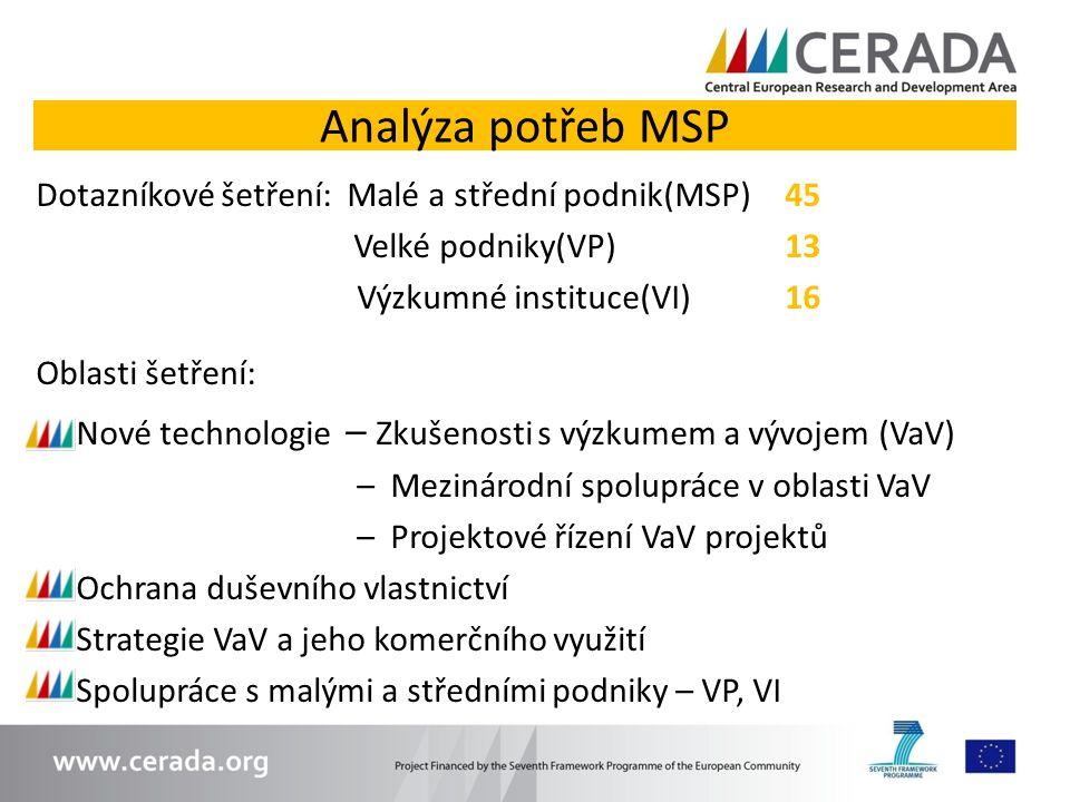 Analýza potřeb MSP Dotazníkové šetření: Malé a střední podnik(MSP) 45