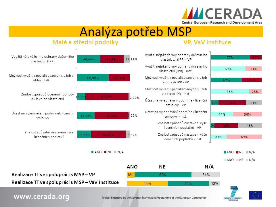 Analýza potřeb MSP