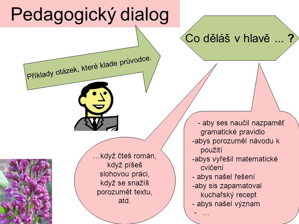 Pedagogický dialog Co děláš v hlavě ...