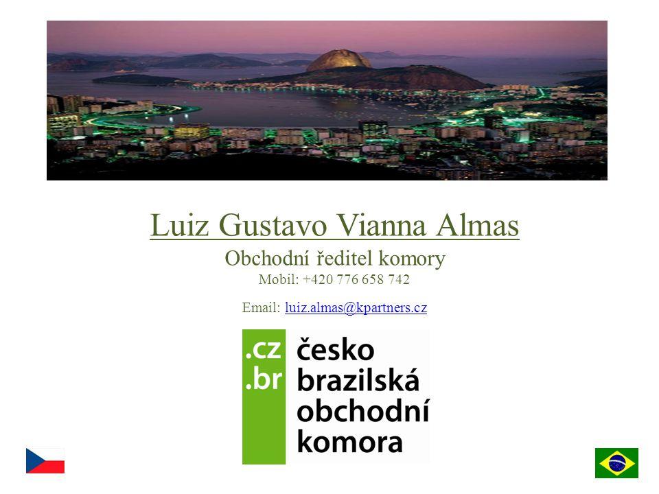 Luiz Gustavo Vianna Almas