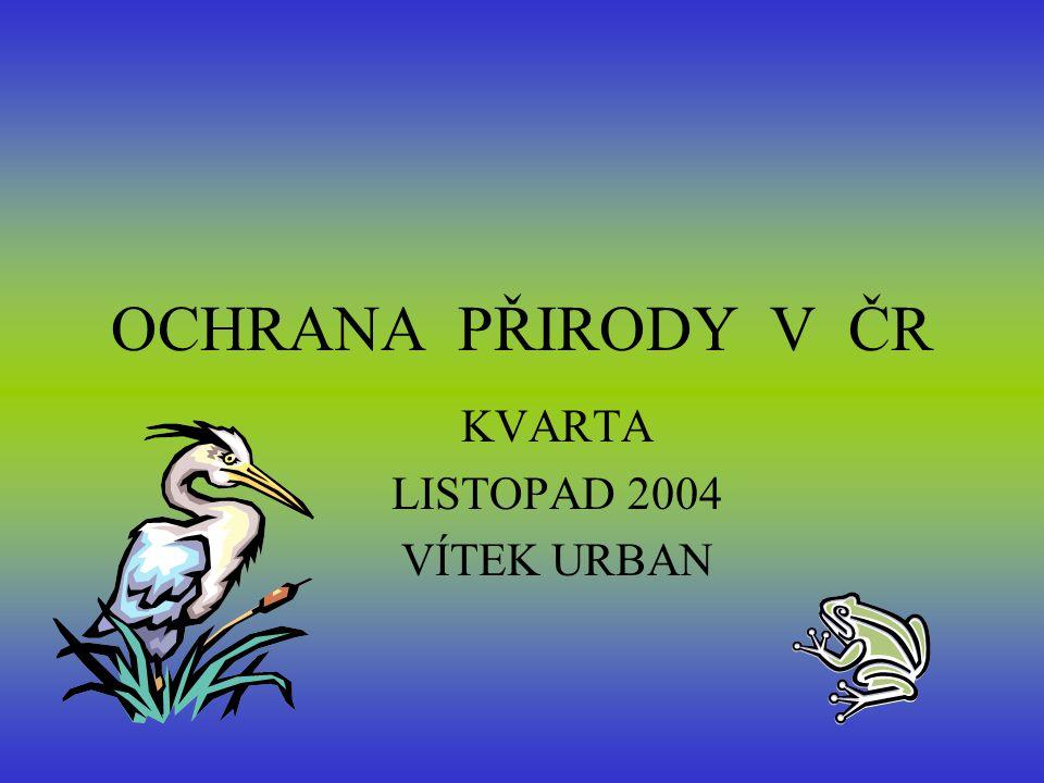 KVARTA LISTOPAD 2004 VÍTEK URBAN