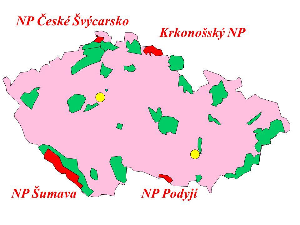 NP České Švýcarsko Krkonošský NP NP Šumava NP Podyjí
