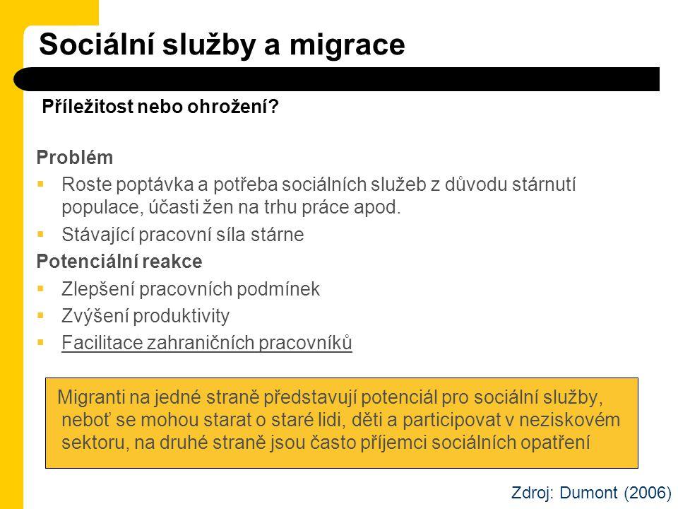 Sociální služby a migrace