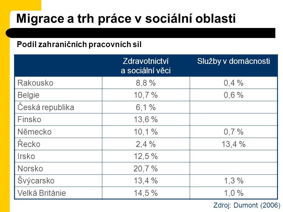 Migrace a trh práce v sociální oblasti