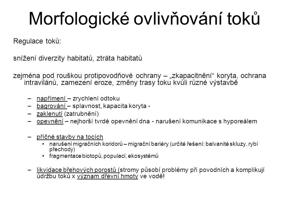 Morfologické ovlivňování toků