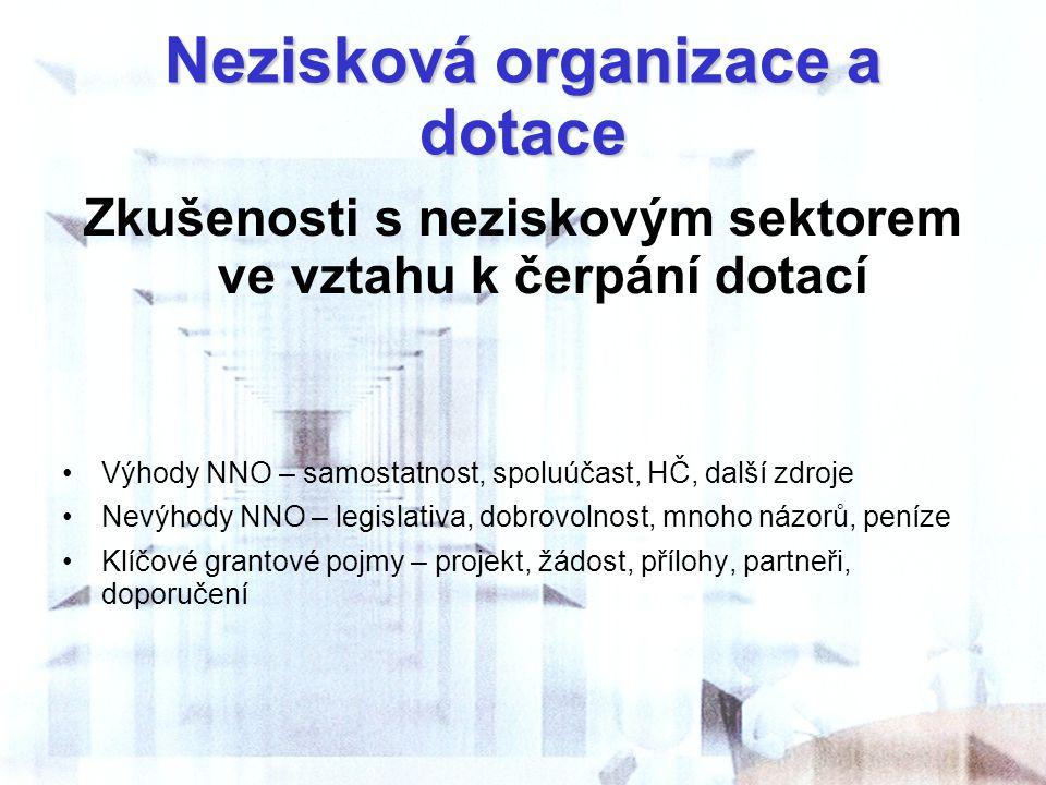 Nezisková organizace a dotace