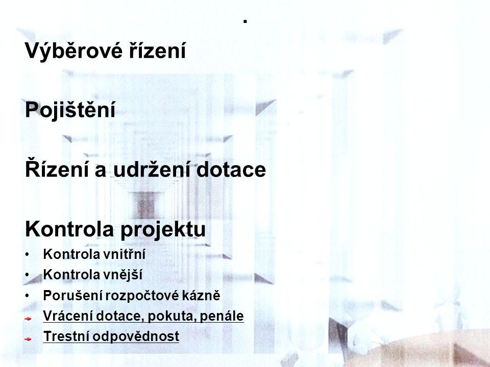 . Výběrové řízení Pojištění Řízení a udržení dotace Kontrola projektu
