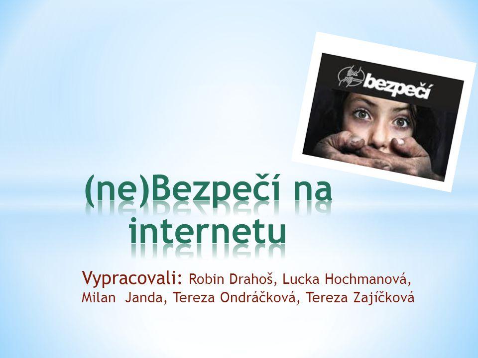 (ne)Bezpečí na internetu