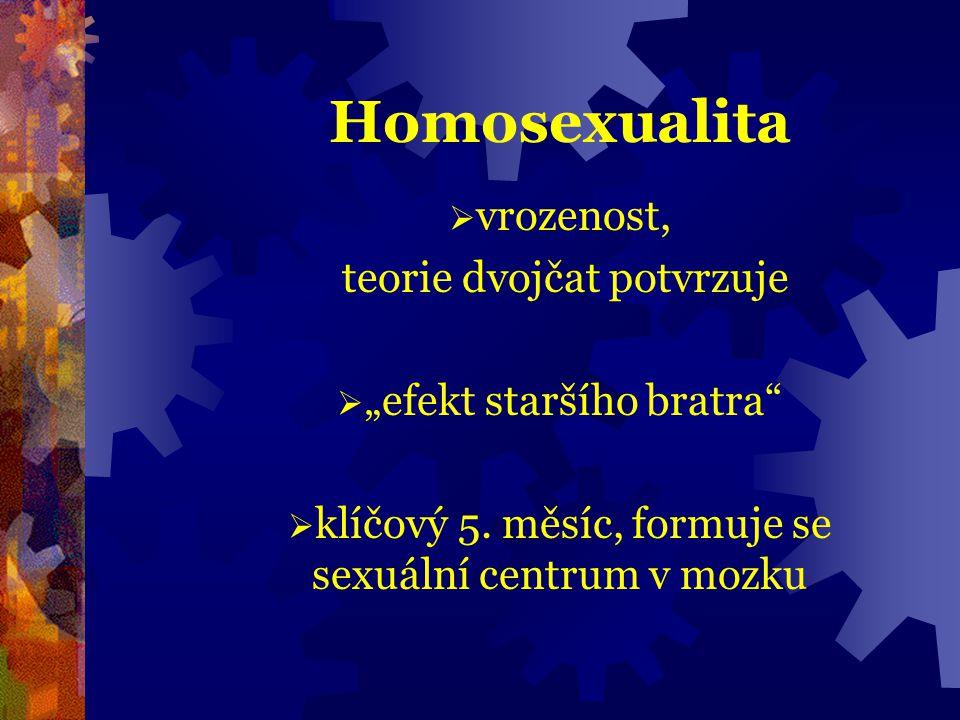 Homosexualita vrozenost, teorie dvojčat potvrzuje