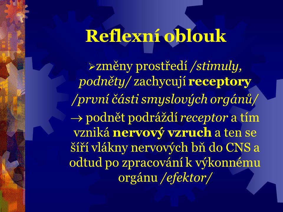 Reflexní oblouk změny prostředí /stimuly, podněty/ zachycují receptory