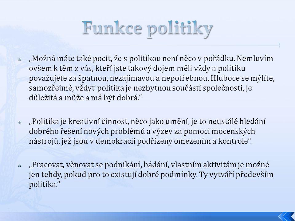 Funkce politiky
