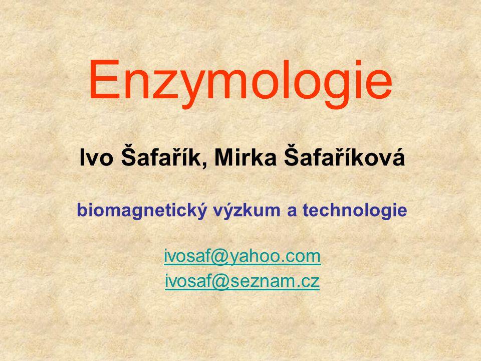 Ivo Šafařík, Mirka Šafaříková biomagnetický výzkum a technologie
