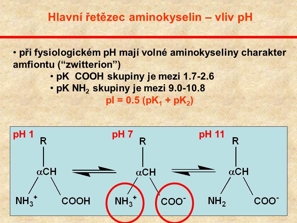 Hlavní řetězec aminokyselin – vliv pH