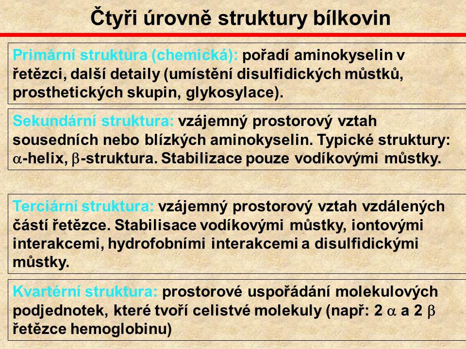Čtyři úrovně struktury bílkovin