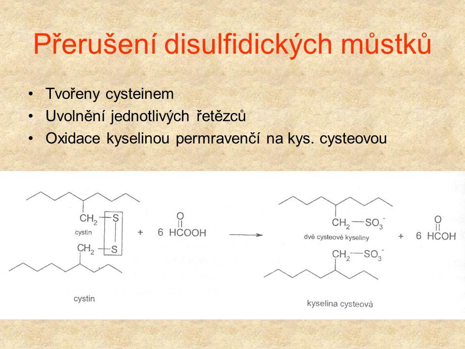 Přerušení disulfidických můstků