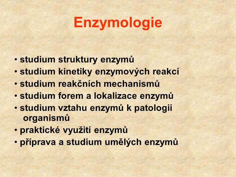 Enzymologie • studium struktury enzymů