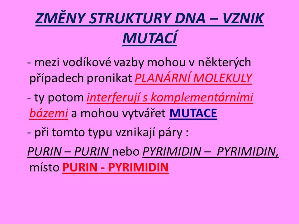 ZMĚNY STRUKTURY DNA – VZNIK MUTACÍ